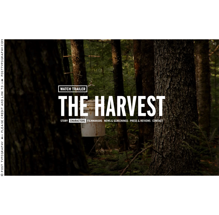 The Harvest: A Story About Giving documentary film titles, graphic design, title design, packaging, website, film festival. Classical paintings. Old master hunting scenes. Paul Bril. Gabriel Deloach. (5)