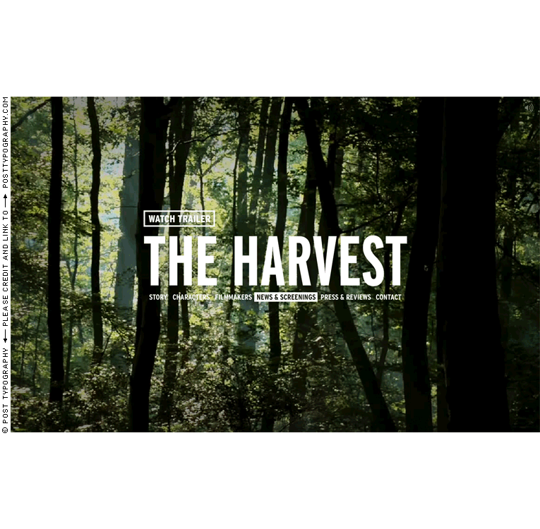 The Harvest: A Story About Giving documentary film titles, graphic design, title design, packaging, website, film festival. Classical paintings. Old master hunting scenes. Paul Bril. Gabriel Deloach. (7)